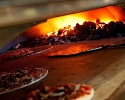 coal oven pizza @ Tony Saccos